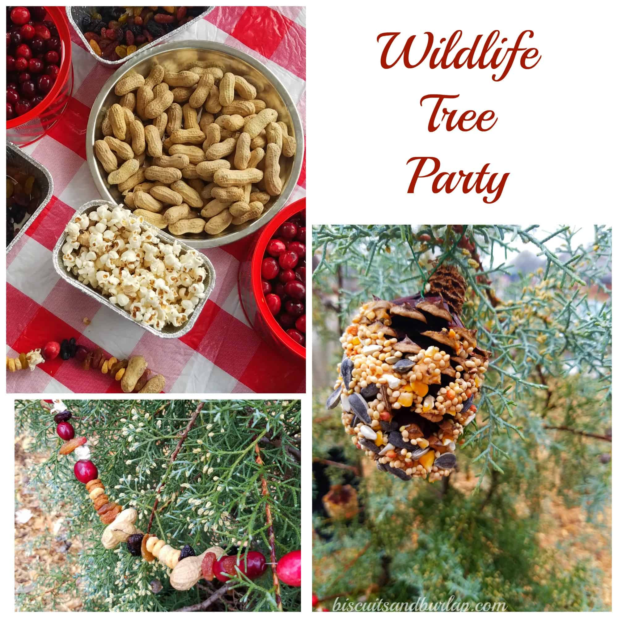 Wildlife Tree Party