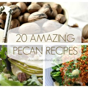 20 Amazing Pecan Recipes – Traditional and Updated