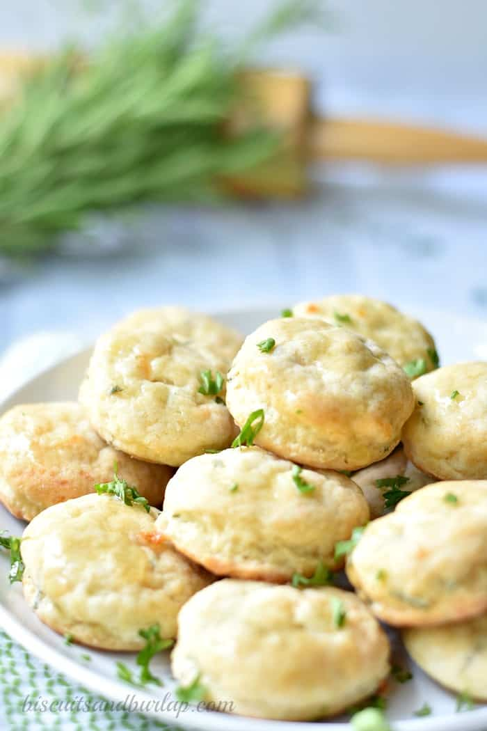 Cheese and herb mini biscuits are perfect for brunch or as an appetizer.