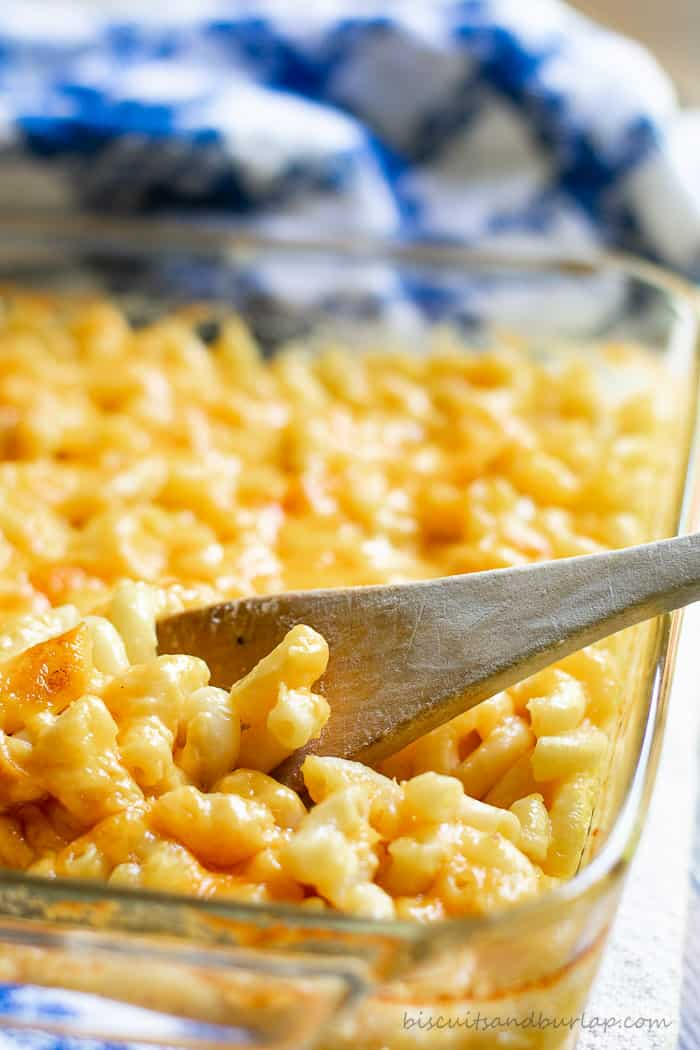 Southern Style Macaroni and Cheese from BiscuitsandBurlap.com