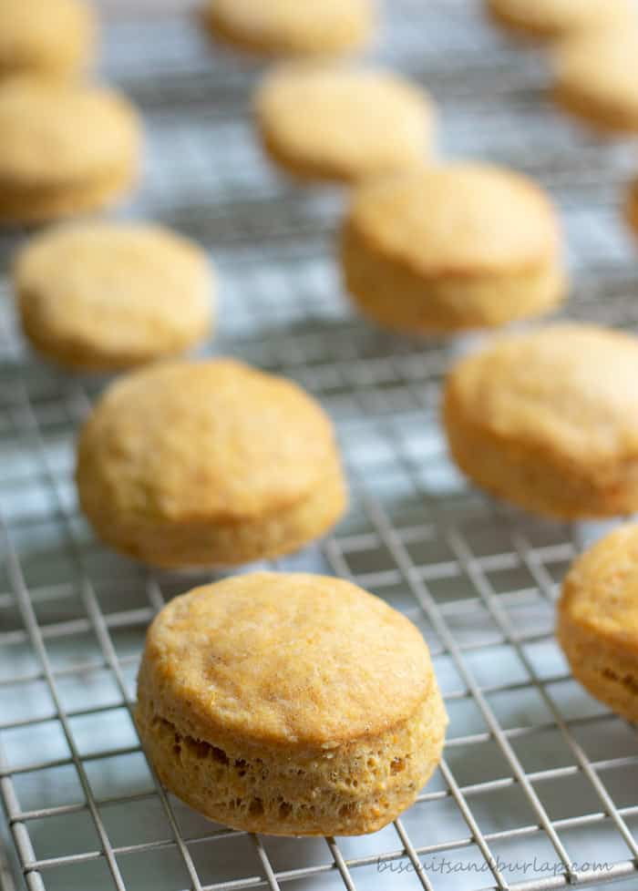 Sweet Potato Biscuits are simple to make and such a special addition to your table.
