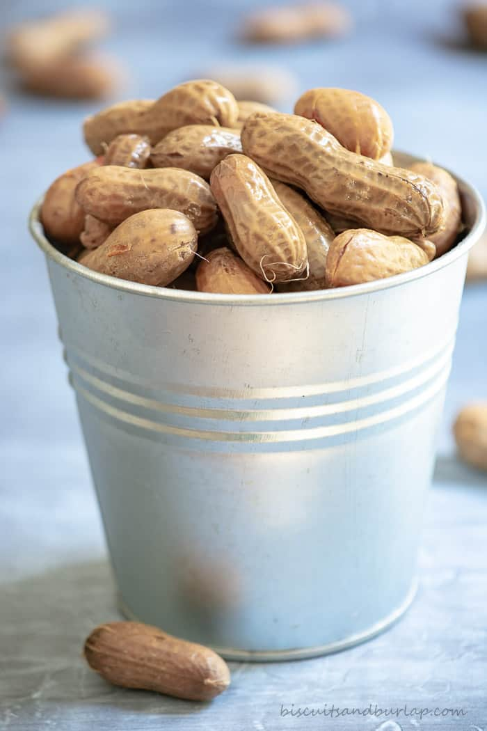 cajun-garlic-beer-boiled-peanuts