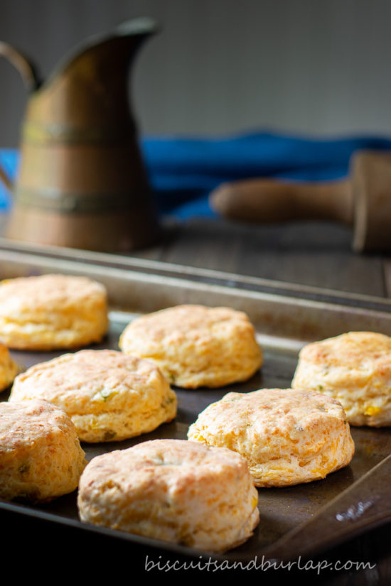 mexican style biscuits on baking sheet with pitcher and rolling pin behind