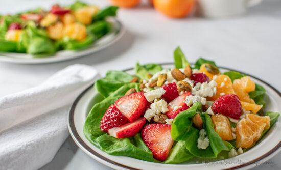 horizontal shot of salad