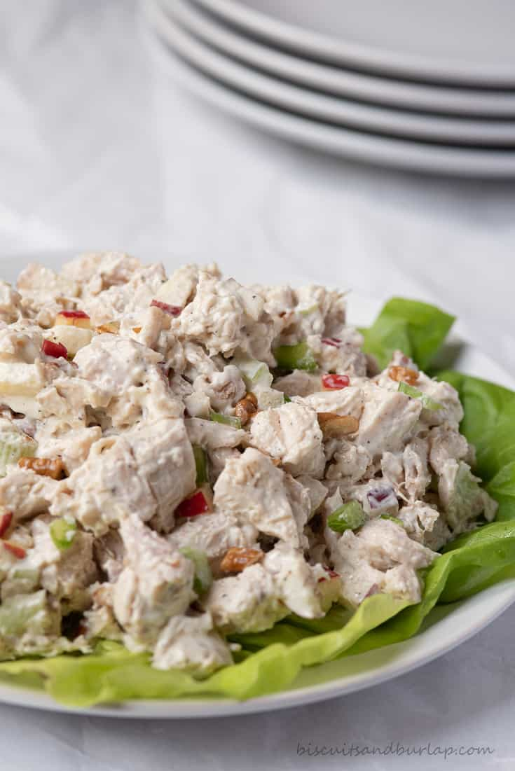 vertical shot of apple pecan chicken salad with plates behind