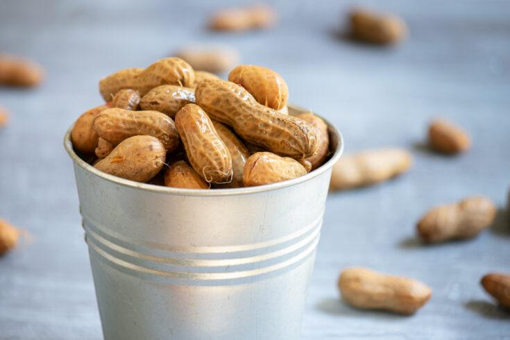 bucket of cajun boiled peanuts