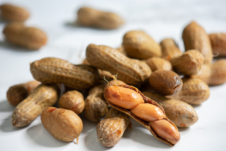 boiled peanuts with one shell open