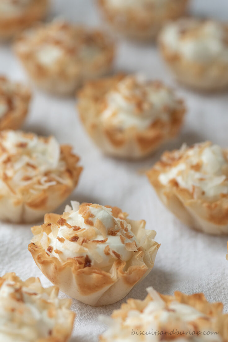 rows of bite sized coconut tarts